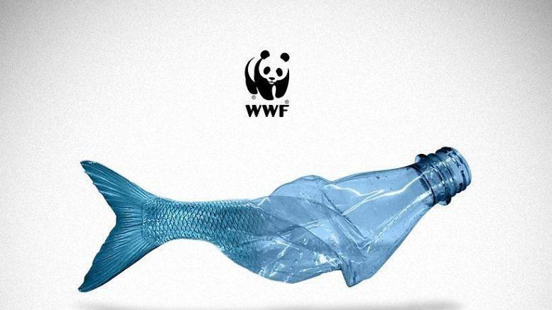 "WWF: ""Italia sia leader plasticfree"""