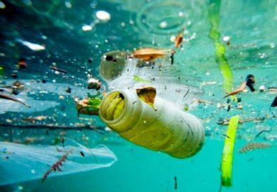 Plastica: CdM approva ddl Salvamare